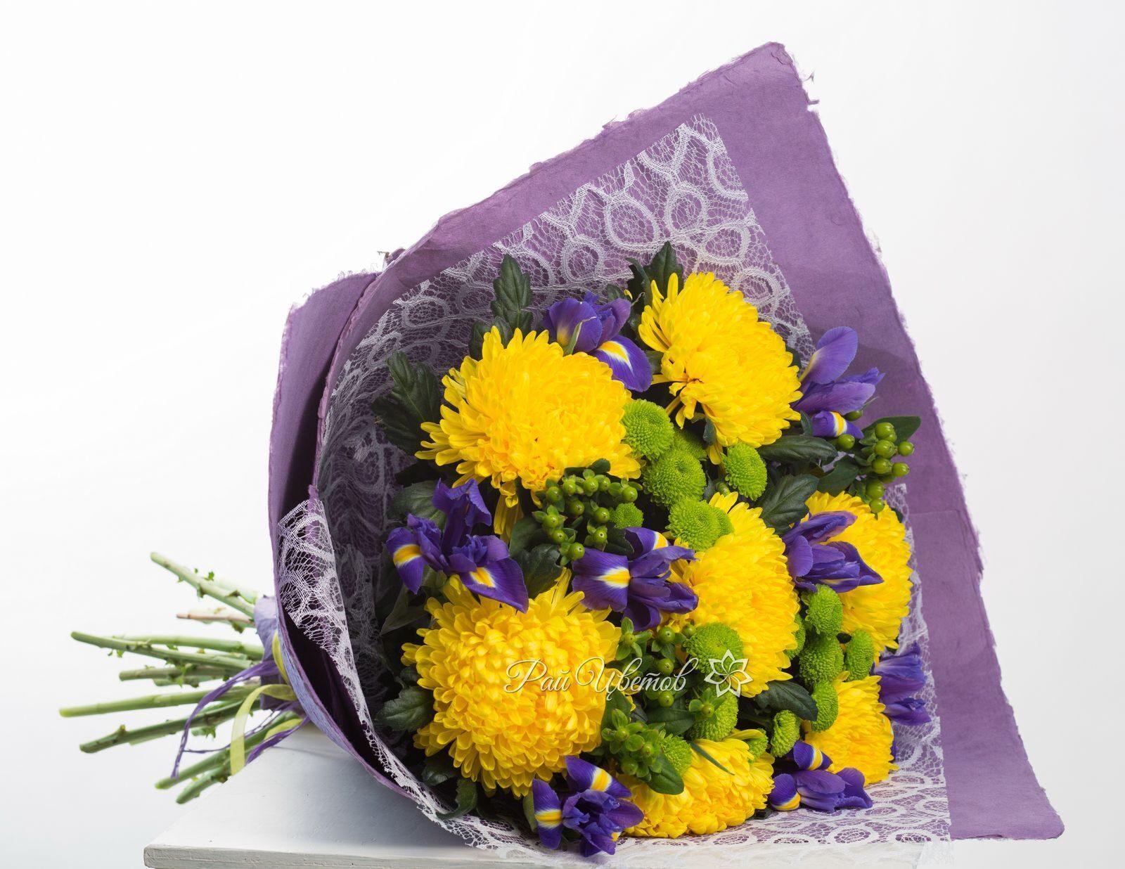 Хризантемы Особенности уход и размножение